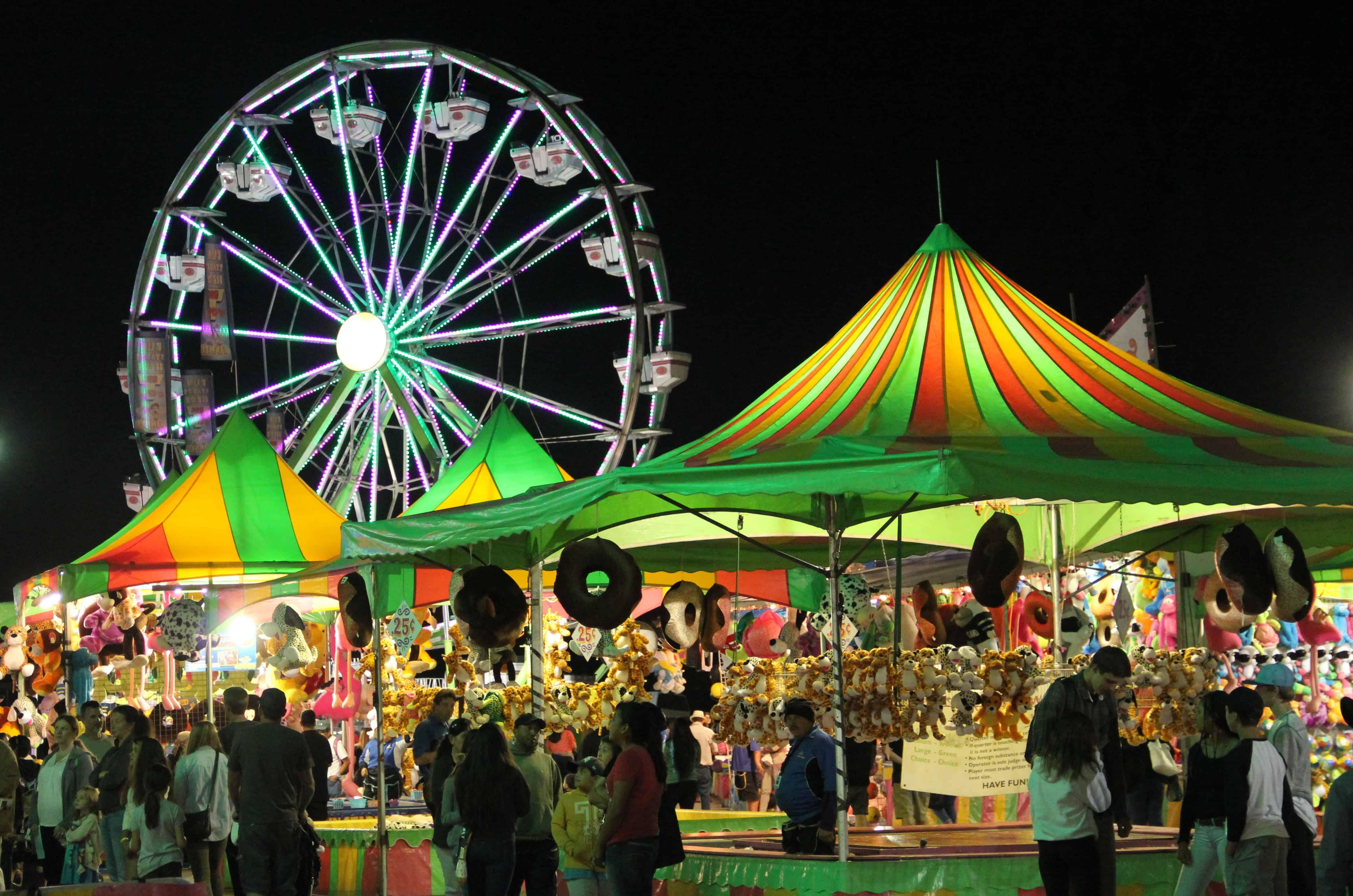 Our Local County Fair