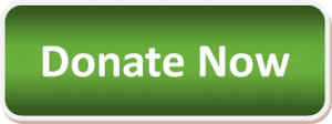 Donate now Button Green